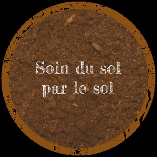 soin du sol par le sol