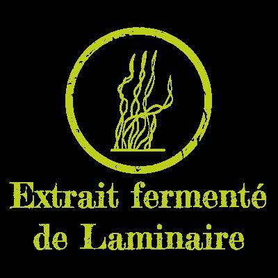 Extrait fermenté de Laminaire