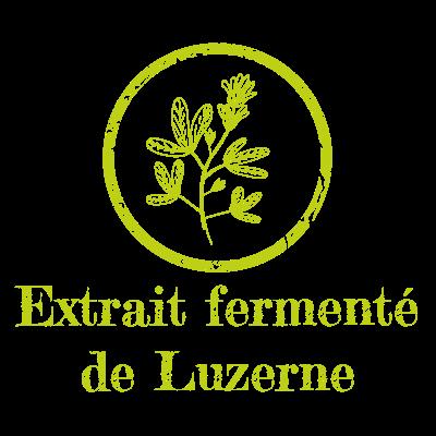 Extrait fermenté de Luzerne