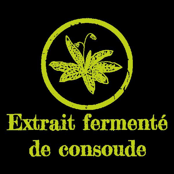 extrait-fermente-consoude